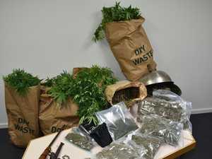 MAJOR DRUG BUST: Alleged dealer arrested, $134k pot seized