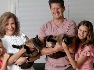 Stop pet health bills from biting