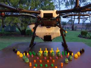 Flying drones targeting Burnett mice and rats tail grass
