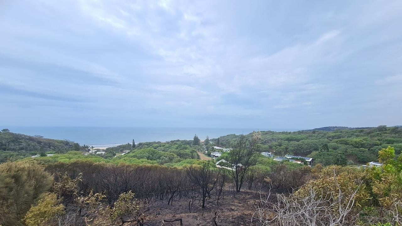 FRASER ISLAND FIRE: The blackened border of where the fire reached in Happy Valley. Photo: Contributed