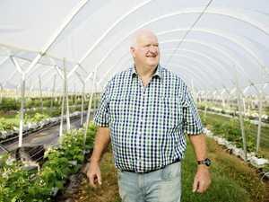 NSW family takes out top farming award