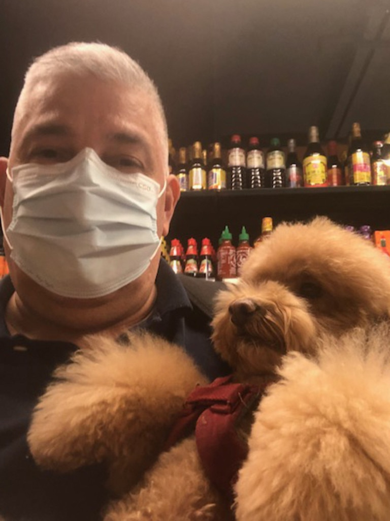Josh Armenta will not leave Hong Kong without three-year-old toy poodle Sophie.