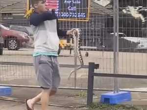 TikTok vid captures most Aussie bloke ever