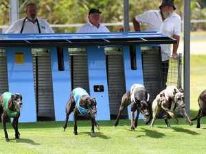 GRAPHIC: Horrific ways dogs die on Qld's third worst track