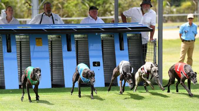 GRAPHIC: Horrific ways dogs die on Qld's third worst track