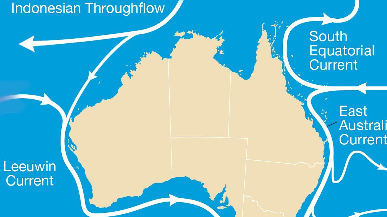 The Leeuwin Current has been funnelling warmer La Nina waters down the WA coast. Picture: BOM.