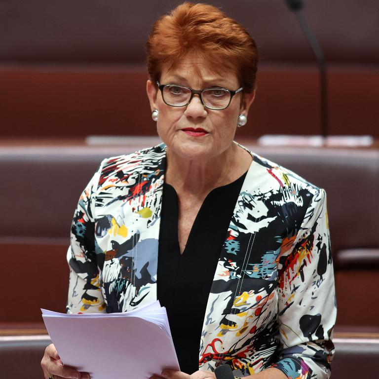 Pauline Hanson's One Nation party is looking for a full-time Queensland campaign director. Picture: Gary Ramage