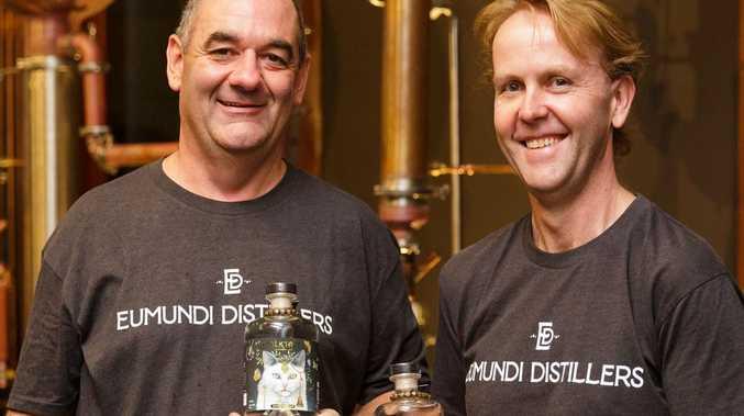 'Gin-tellectual' approach has distiller in high spirits