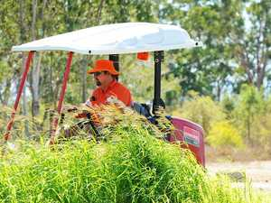 Council says 'significant progress' made on mowing backlog