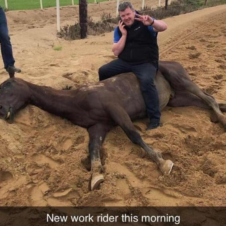 Gordon Elliott sits on a dead horse.