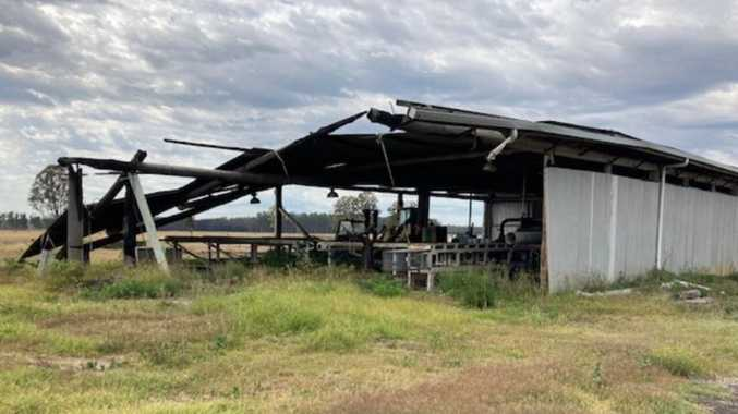 From the ashes: Sawmill's big decision after bushfire