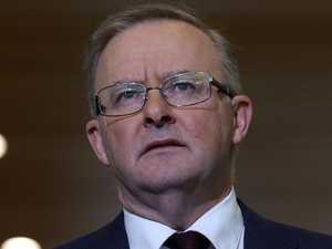 'Vile abuse': Albo demands MP's sacking