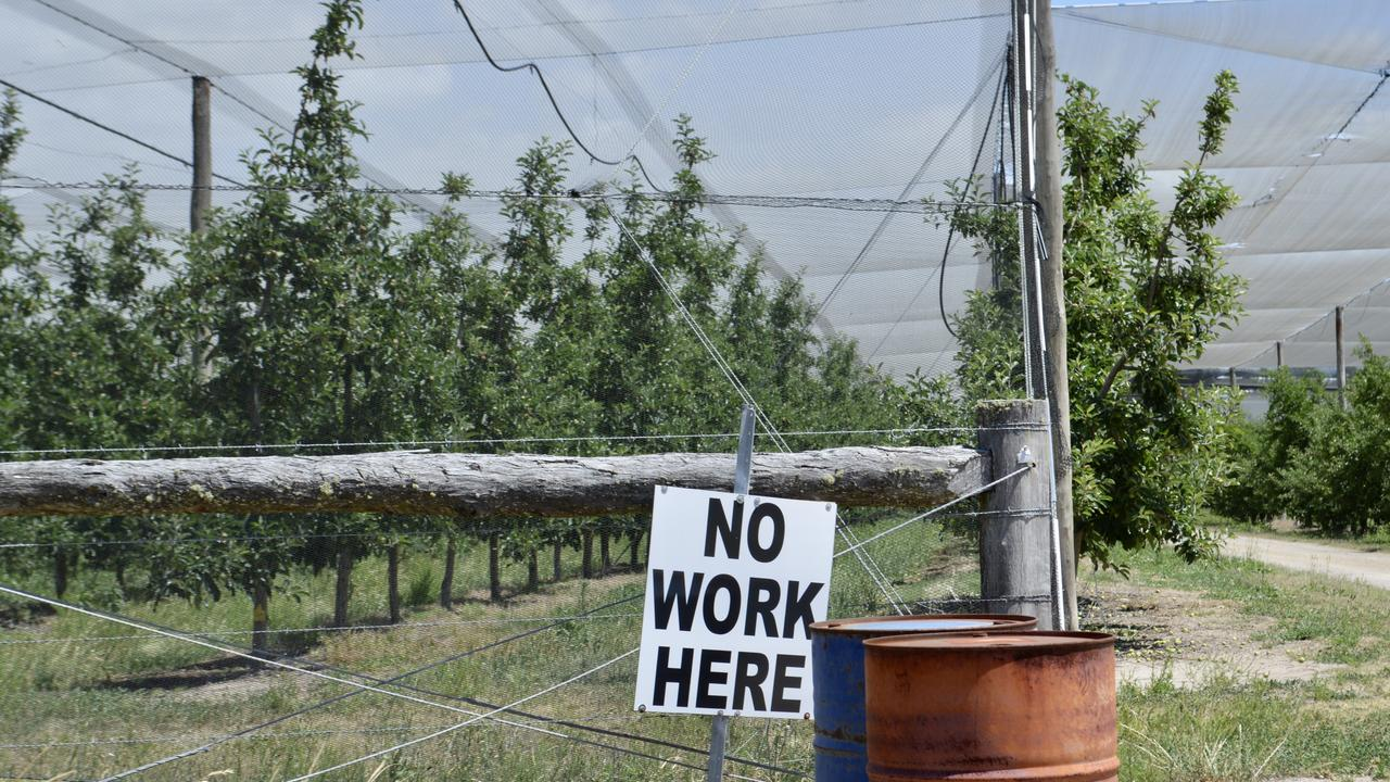NO WORK: A sign spotted outside a Stanthorpe farm.
