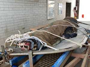 Video: Monster 4.5m croc caught in Darwin Harbour