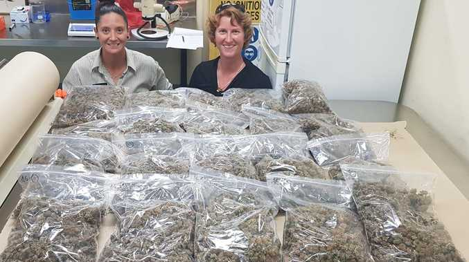 Cap Coast cannabis supply cut short as 80kg seized by cops