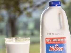 Norco quiet on investigation into milk tampering