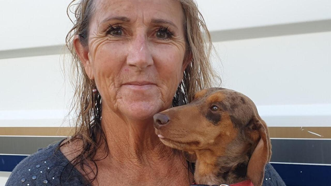 Rosewood dog breeder Sharyn Beed with her dog Elvis after he was returned to her safely.