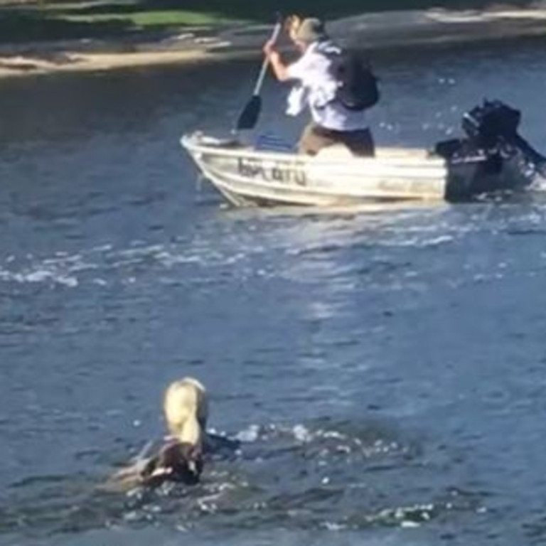 Gold Coast mum Penelope Howard posted video footage to Facebook of her swimming after her son's tinny, which was allegedly stolen by an Ormeau man. Picture: Facebook/Penelope Howard