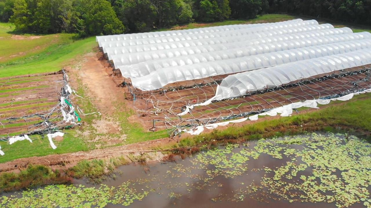 Damage at Peter Bahttis raspberry farm after flooding destroyed it last week. Photos: Frank Redward