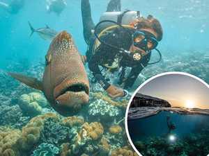 Queenslanders offered $200 travel vouchers