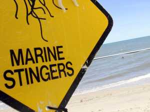 Two children stung by jellyfish off Mackay beach