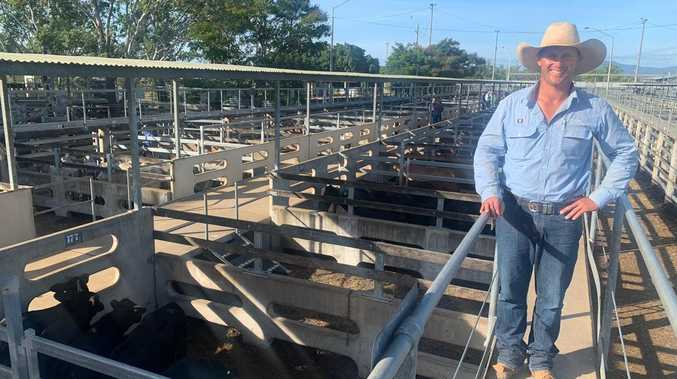 Bidders battle it out at record-breaking cattle sale