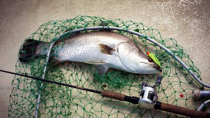 Free app to help Coast anglers abide by laws