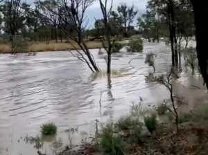 Rainfall at Alpha property