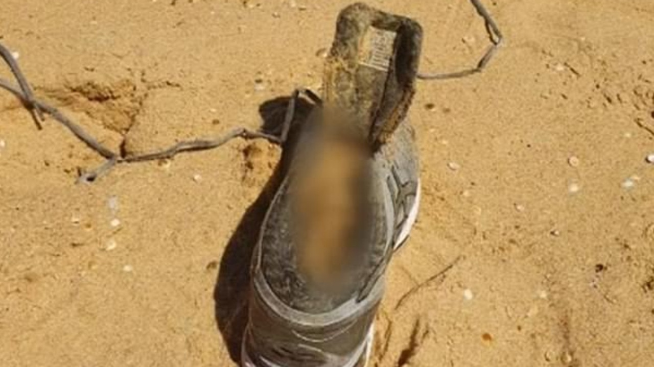 Several experts have said the condition of the shoe was too good to have been in the water for a long time.
