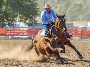 Iconic Fernvale horse event secures overwhelming nominations