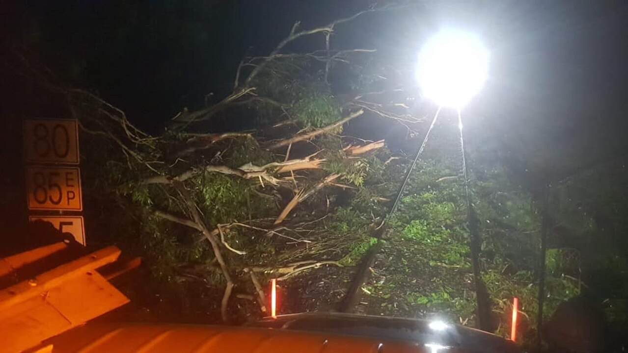 Fallen trees from a storm shown in front of the XPT which was damaged after it ran over them last night. Photo: Grafton Fire Rescue NSW Station 306