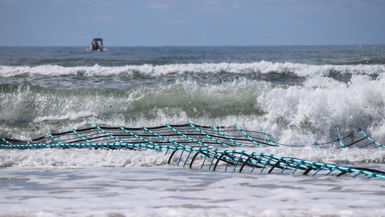 The Lennox Head shark barrier trial had to be abandoned.