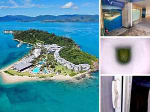 'Maggots in the coffee': Daydream Island savaged by reviews