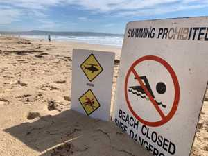 Woman attacked by shark on NSW far south coast