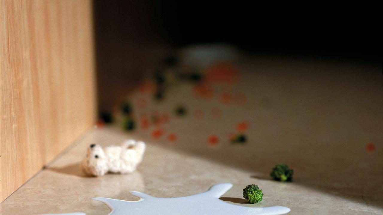 Undated : Generic spilt milk on floor with teddy bear