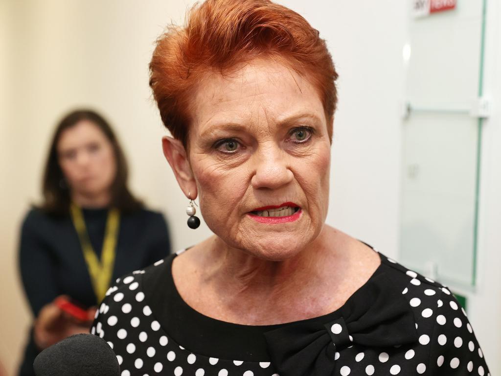 Senator Pauline Hanson wants women to 'stop demonising men'. Picture: NCA NewsWire / Gary Ramage