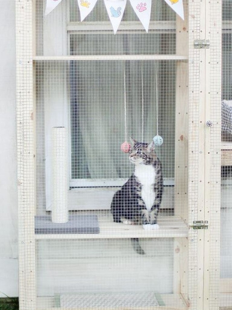 An Ikea Hejne catio.