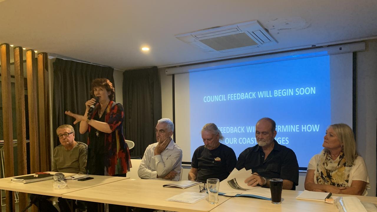 Maroochydore MP Fiona Simpson addresses the crowd.