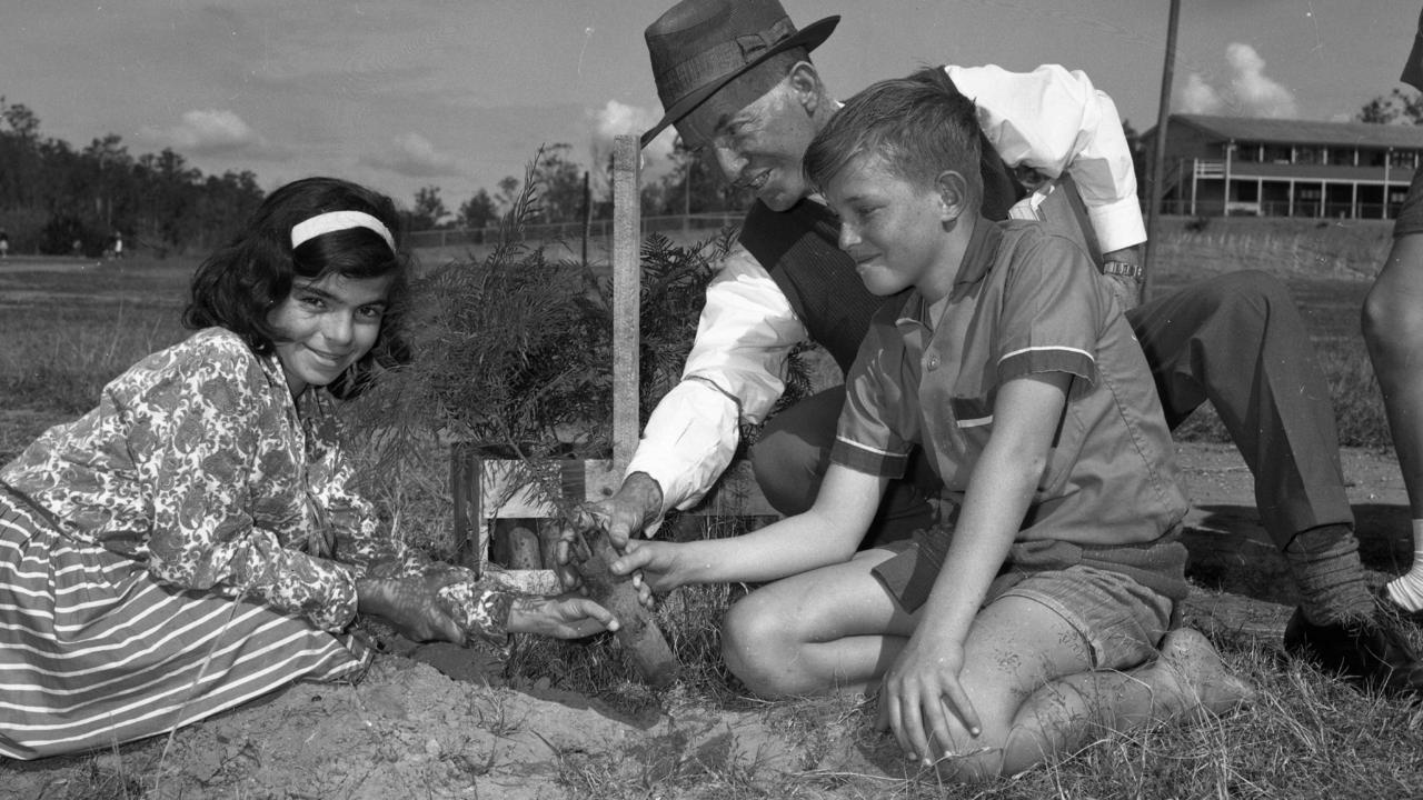 Mt Gravatt East State School tree planting in 1965. Christine Kafoaloudis and Geoffery Patrick with assistant head teacher J.C. Hale. Picture: Ray Saunders