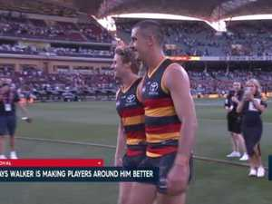 Crows kill of Cats in round one