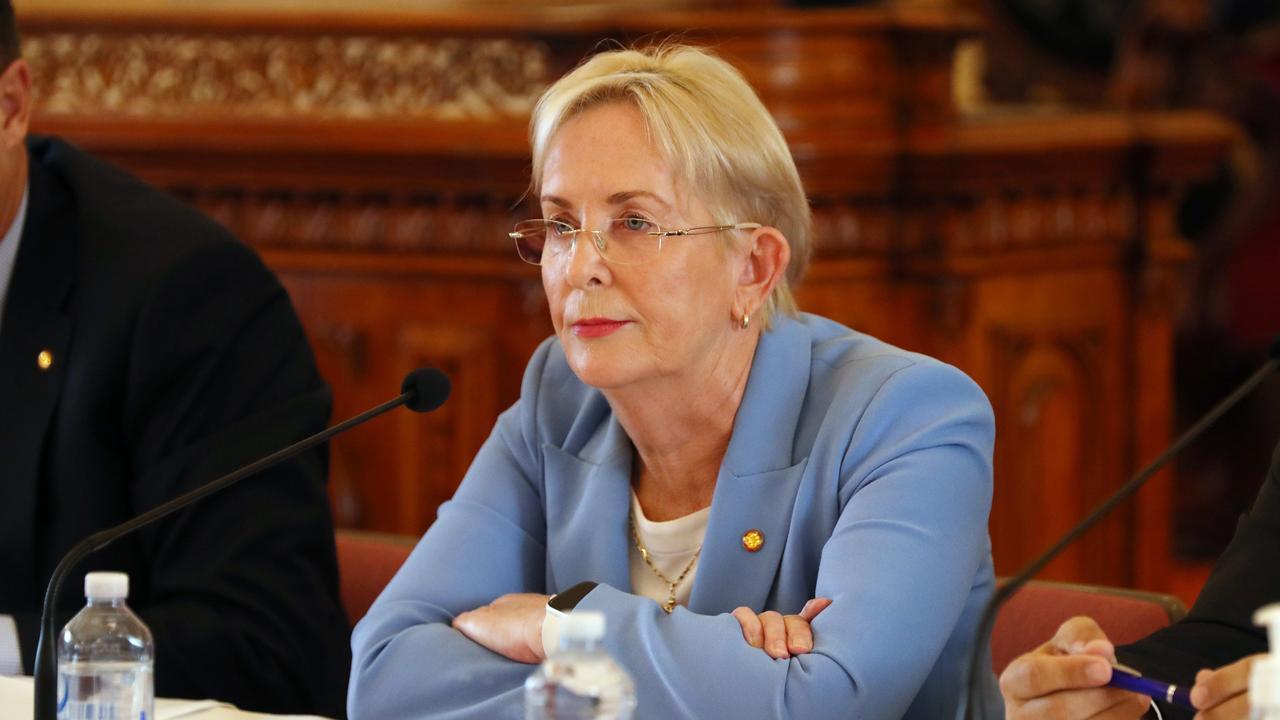 Shadow Minister for Health and Ambulance Services Ros Bates. Pics Tara Croser.