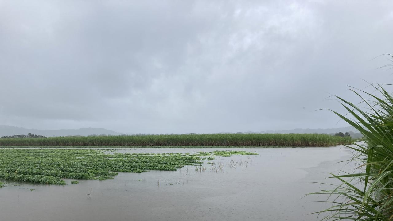 Robert Quirk's sugar cane farm in Stotts Creek flooded by recent rain.