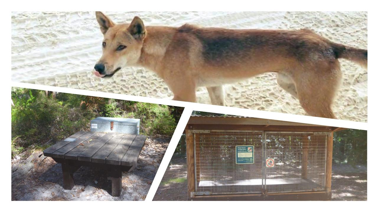 New lockers are being installed at Teebing camping area on Fraser Island as part of the Queensland Parks and Wildlife Service's dingo safety blitz. Â