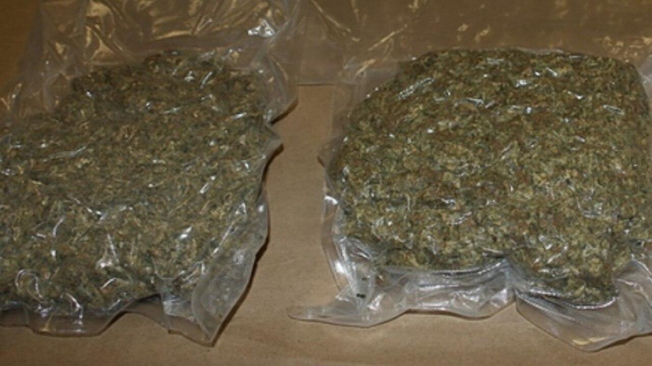 Marijuana seized by Sunshine Coast detectives in 2016 as part of Operation Oscar Octave.