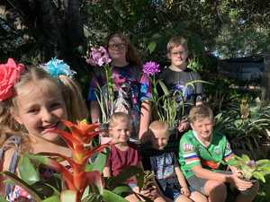 Garden show plants seed of goodwill for special kids