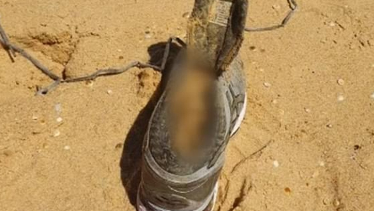 Her shoe and foot washed up on a remote beach months later.