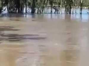 Barambah Organics flooding 2021