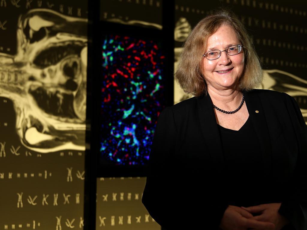 Australian Nobel laureate Elizabeth Blackburn, photographed at The Harry Perkins Research building.