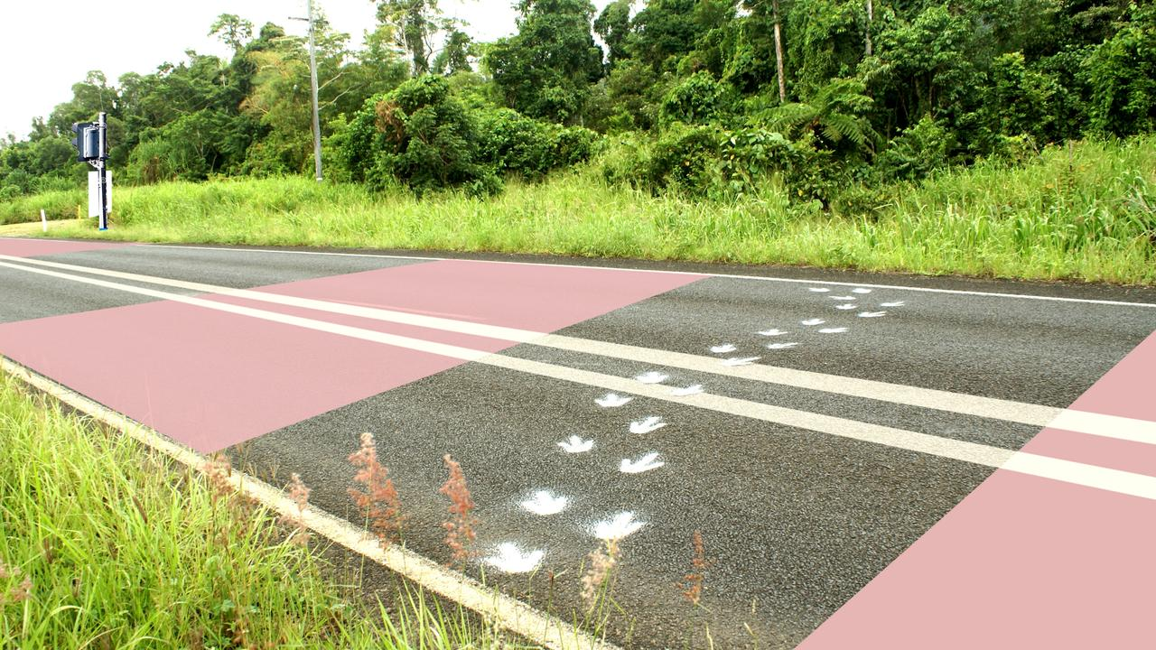 An artist's impression of what the cassowary zones could look like on Tully Mission Beach Road.
