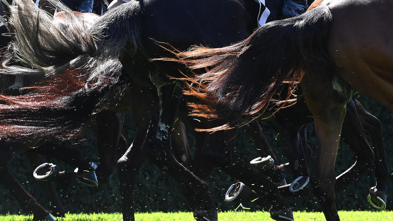 A huge day of racing will kick off the carnival in Rockhampton.